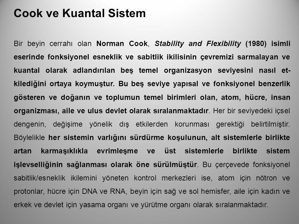 Cook ve Kuantal Sistem Bir beyin cerrahı olan Norman Cook, Stability and Flexibility (1980) isimli eserinde fonksiyonel esneklik ve sabitlik ikilisini
