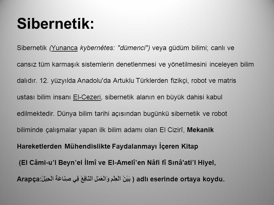 Sibernetik: Sibernetik (Yunanca kybernétes: