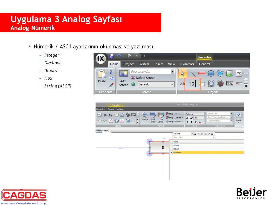  Nümerik / ASCII ayarlarının okunması ve yazılması −Integer −Decimal −Binary −Hex −String (ASCII) Uygulama 3 Analog Sayfası Analog Nümerik
