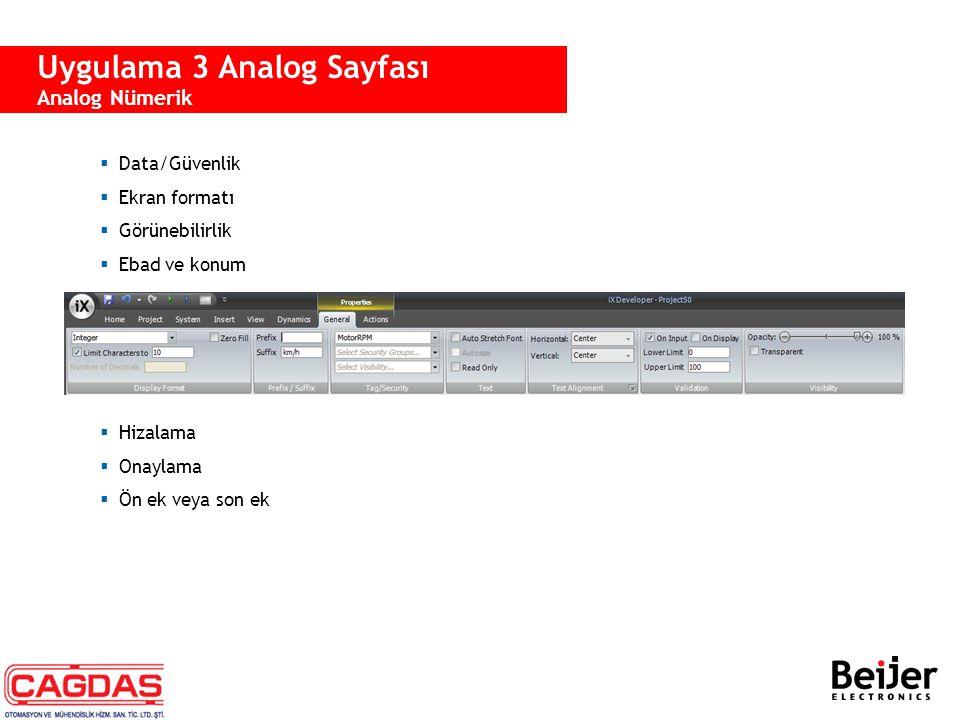 Uygulama 3 Analog Sayfası