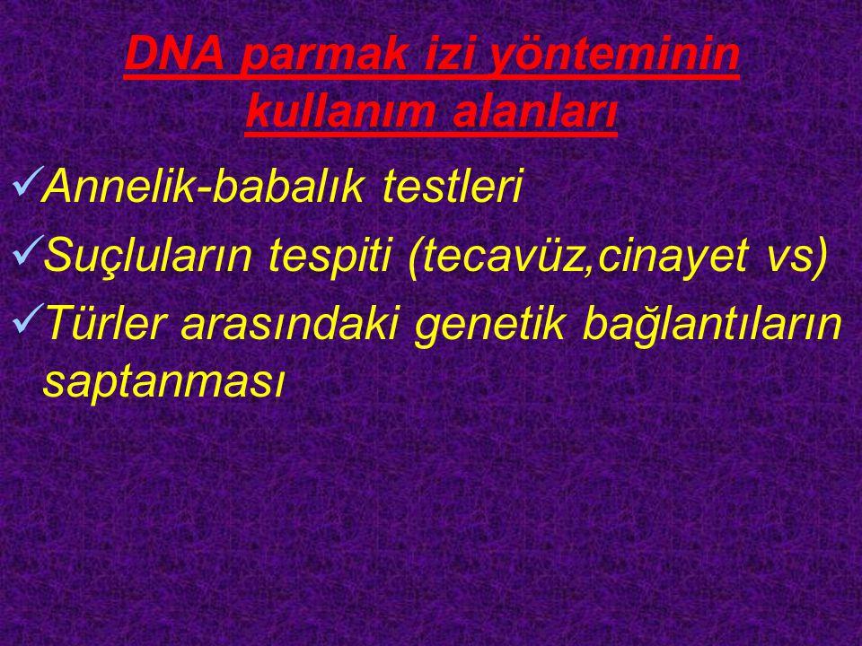 DNA parmak izi yönteminin kullanım alanları Annelik-babalık testleri Suçluların tespiti (tecavüz,cinayet vs) Türler arasındaki genetik bağlantıların saptanması