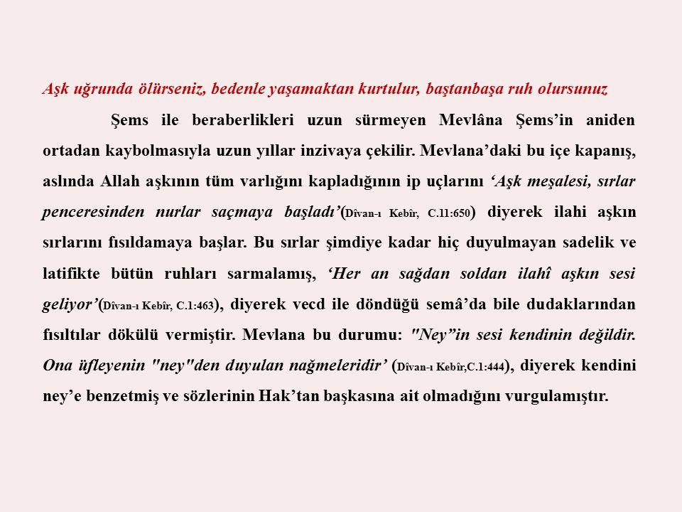 Mevlana'nın ilahi aşkının dışa yansımaları olan mesnevi, şiir ve divanını bu dönemlerde yazdığı bilinmektedir.