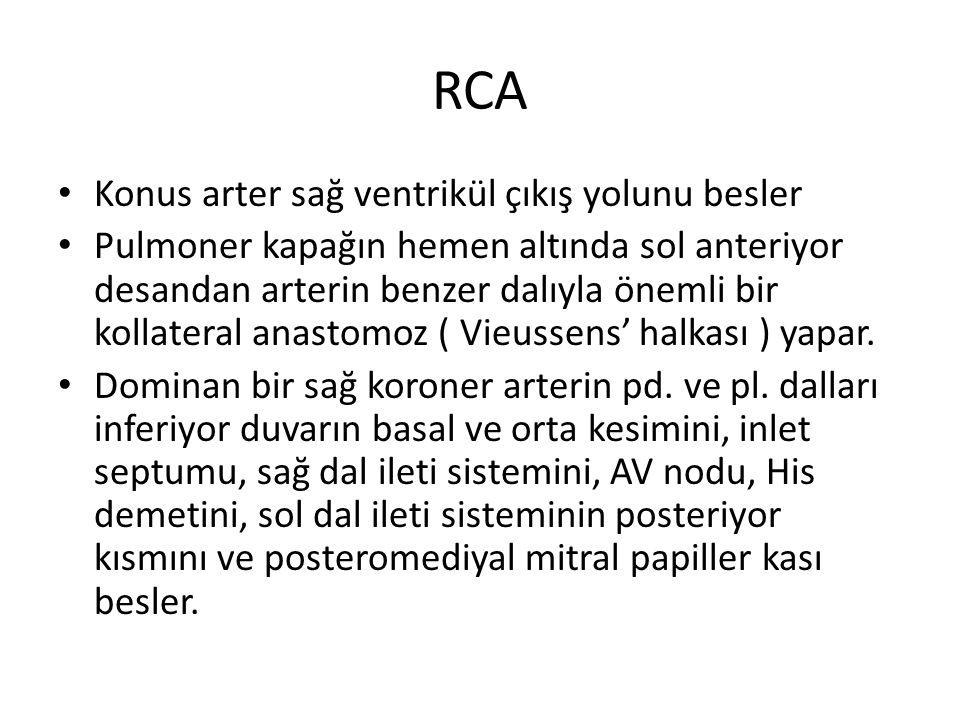 RCA Sağ aortik sinüsden dike yakın açıyla çıkar. Sağ AV groove da cruxa kadar ilerler. Konus arteri: % 60 ilk dal,% 40 ayrı orifisden çıkar. Sinüs nod