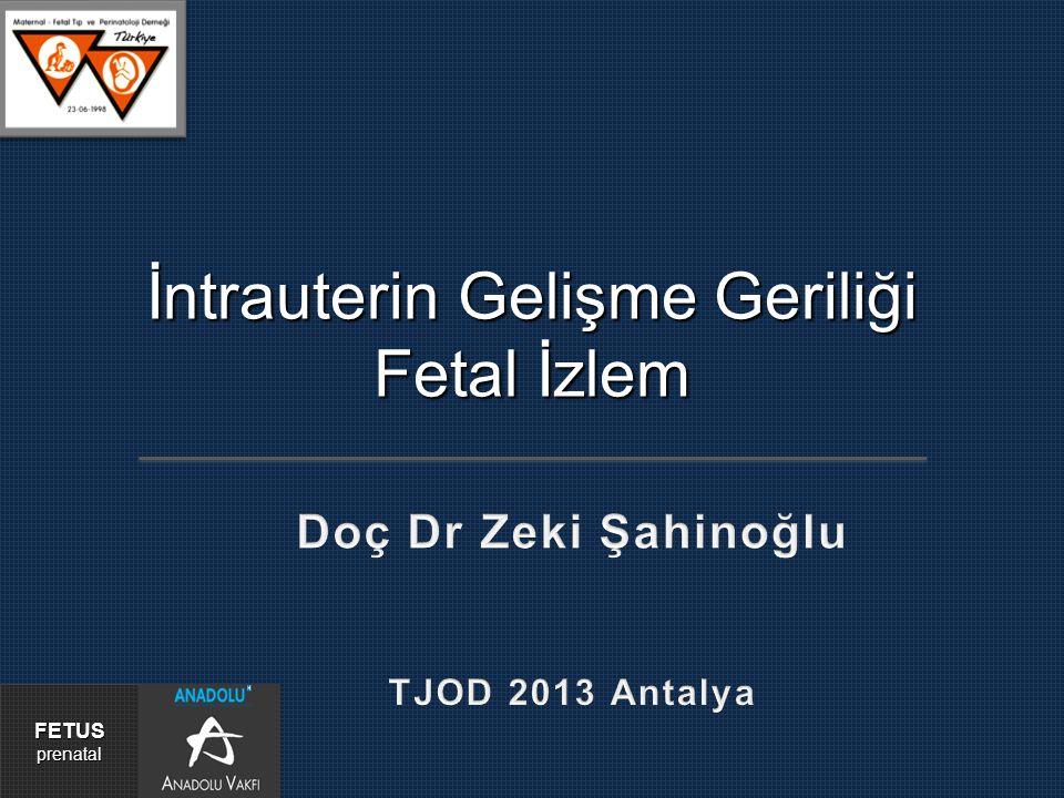 İntrauterin Gelişme Geriliği Fetal İzlem FETUSprenatal