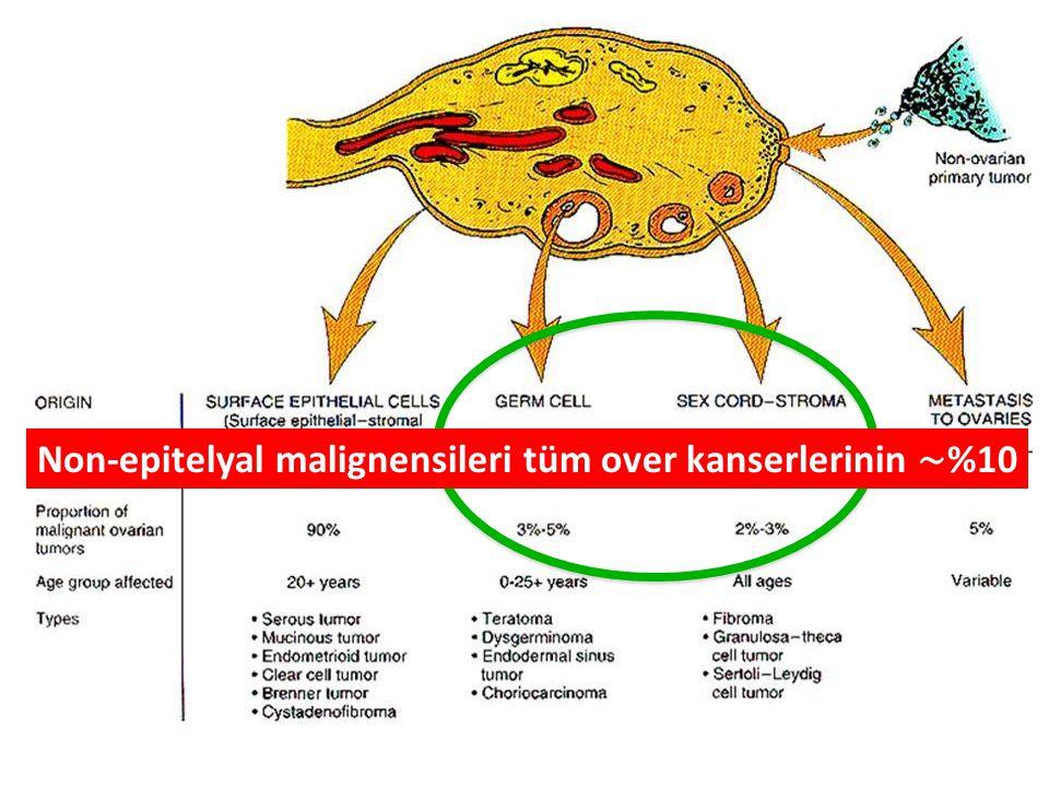 Non-epitelyal malignensileri tüm over kanserlerinin ∼ %10
