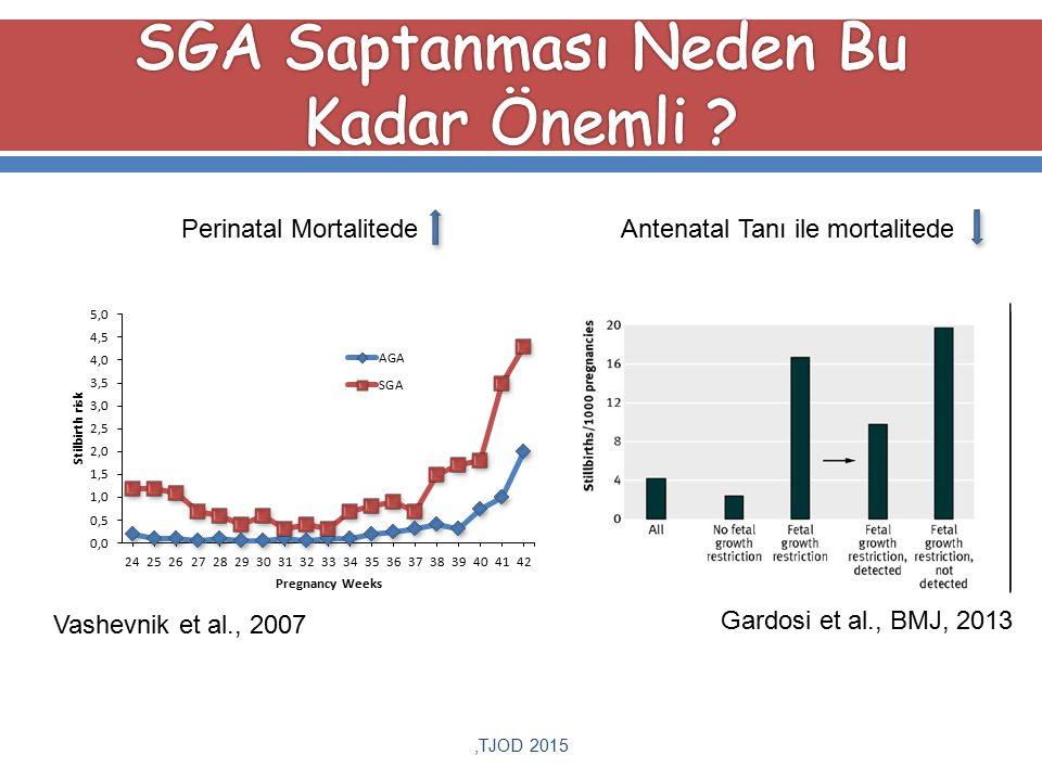 ,TJOD 2015 Antenatal Tanı ile mortalitede Gardosi et al., BMJ, 2013 Perinatal Mortalitede Vashevnik et al., 2007
