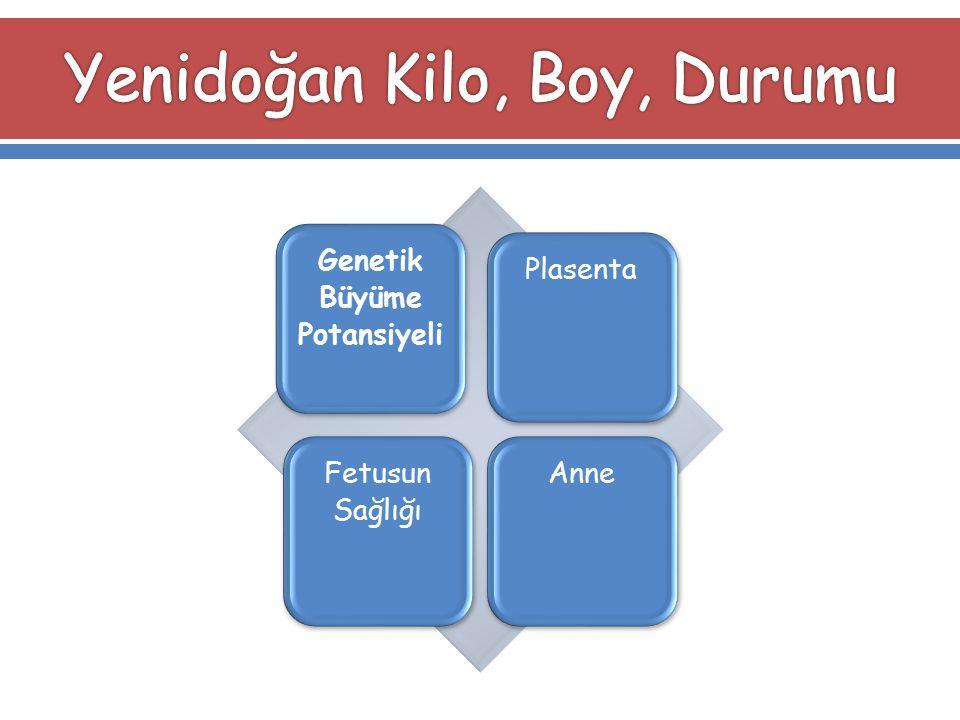 Genetik Büyüme Potansiyeli PlasentaFetusun Sağlığı Anne