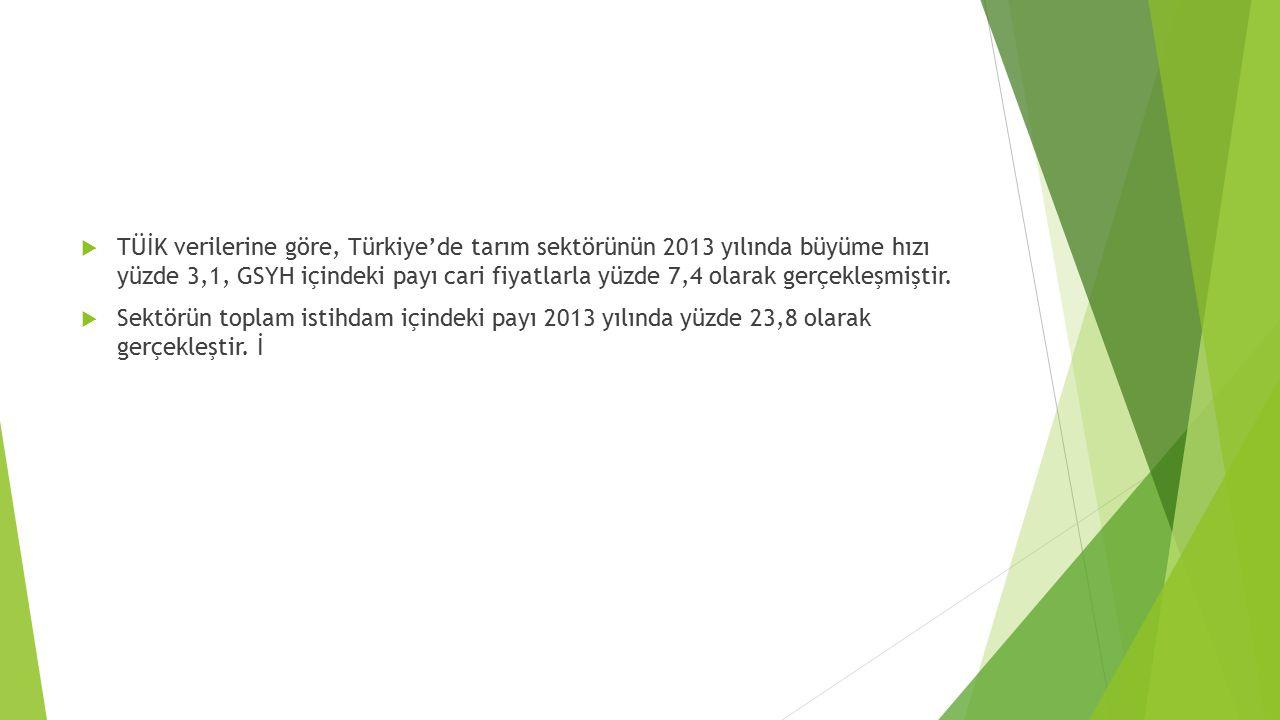  TÜİK verilerine göre, Türkiye'de tarım sektörünün 2013 yılında büyüme hızı yüzde 3,1, GSYH içindeki payı cari fiyatlarla yüzde 7,4 olarak gerçekleşmiştir.