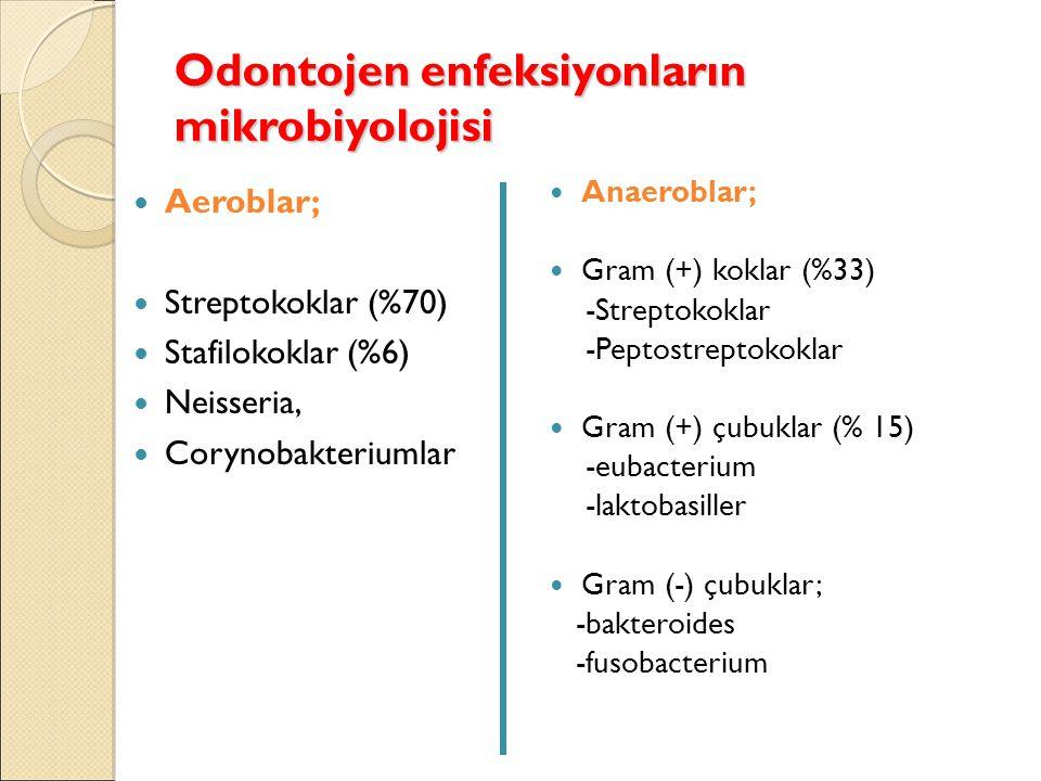 Odontojen enfeksiyonların mikrobiyolojisi Aeroblar; Streptokoklar (%70) Stafilokoklar (%6) Neisseria, Corynobakteriumlar Anaeroblar; Gram (+) koklar (%33) -Streptokoklar -Peptostreptokoklar Gram (+) çubuklar (% 15) -eubacterium -laktobasiller Gram (-) çubuklar; -bakteroides -fusobacterium