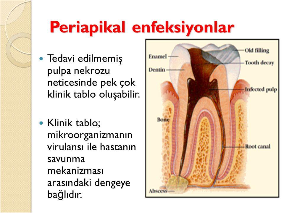 Periapikal enfeksiyonlar Tedavi edilmemiş pulpa nekrozu neticesinde pek çok klinik tablo oluşabilir.