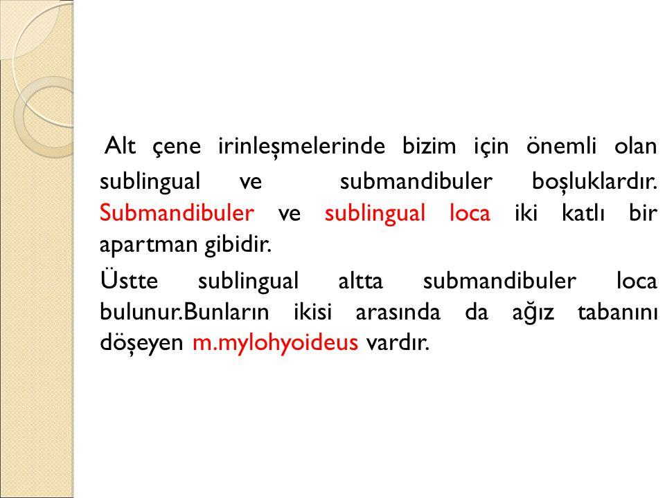 Alt çene irinleşmelerinde bizim için önemli olan sublingual ve submandibuler boşluklardır.