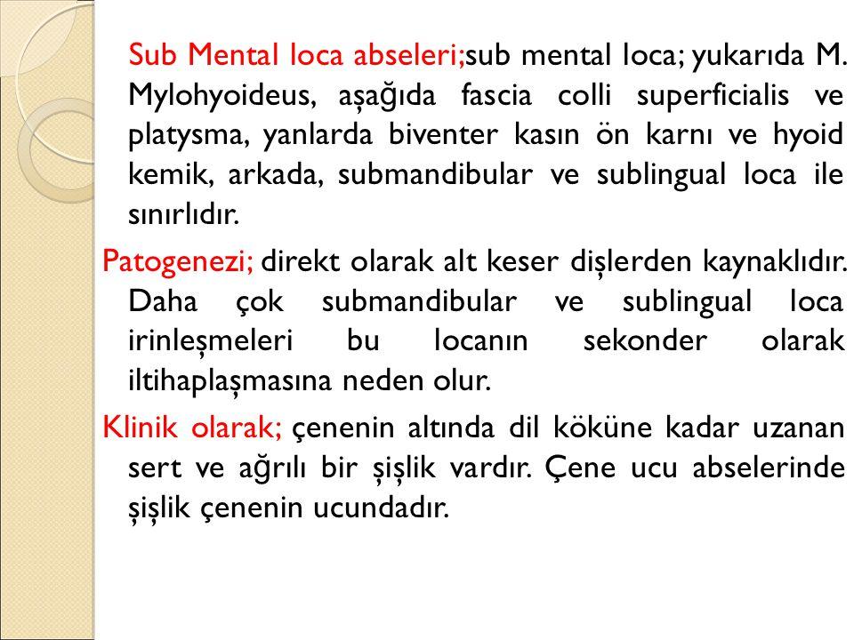 Sub Mental loca abseleri;sub mental loca; yukarıda M. Mylohyoideus, aşa ğ ıda fascia colli superficialis ve platysma, yanlarda biventer kasın ön karnı