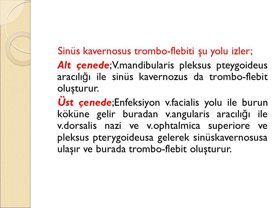 Klinik Görünüm: M.pterygoideus medialis'in etkilenmesi sonucu şiddetli trismus gelişir.