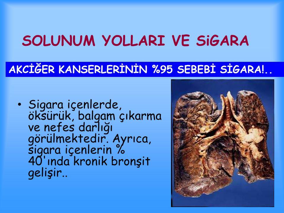 15 yaş üstü nüfusun 1/3'ü sigara içmektedir. Sigara içenlerin %75'i bağımlı olmaktadır. Bağımlı olanların %50'si sigaraya bağlı bir nedenden erken ölm
