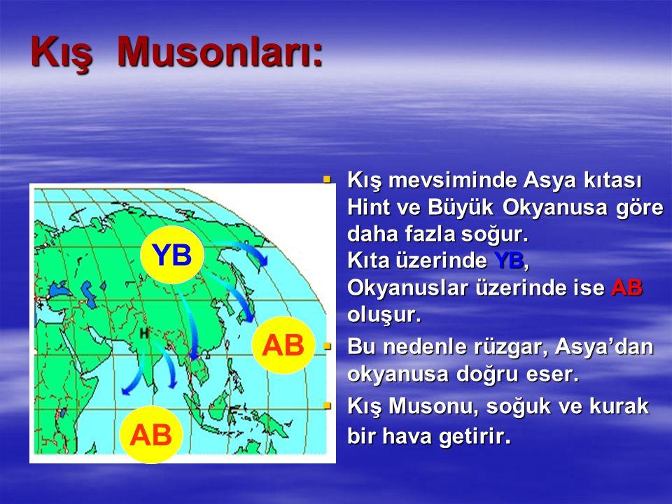 Kış Musonları:  Kış mevsiminde Asya kıtası Hint ve Büyük Okyanusa göre daha fazla soğur. Kıta üzerinde YB, Okyanuslar üzerinde ise AB oluşur.  Bu ne