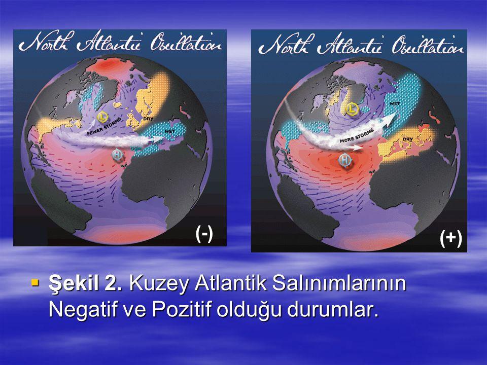  Şekil 2. Kuzey Atlantik Salınımlarının Negatif ve Pozitif olduğu durumlar. (+) (-)