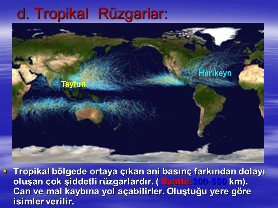 d. Tropikal Rüzgarlar: TTTTropikal bölgede ortaya çıkan ani basınç farkından dolayı oluşan çok şiddetli rüzgarlardır. ( Saatte:300-500 km). Can ve