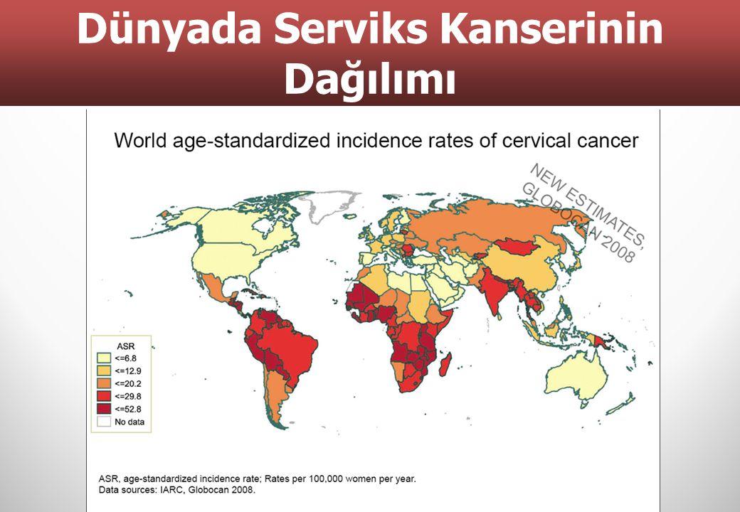 Dünyada Serviks Kanserinin Dağılımı 4