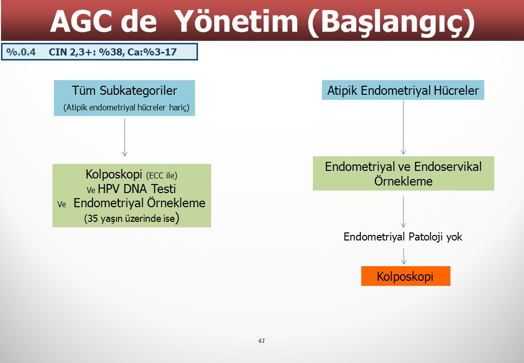 61 AGC de Yönetim (Başlangıç) Tüm Subkategoriler (Atipik endometriyal hücreler hariç) Atipik Endometriyal Hücreler Endometriyal ve Endoservikal Örnekl