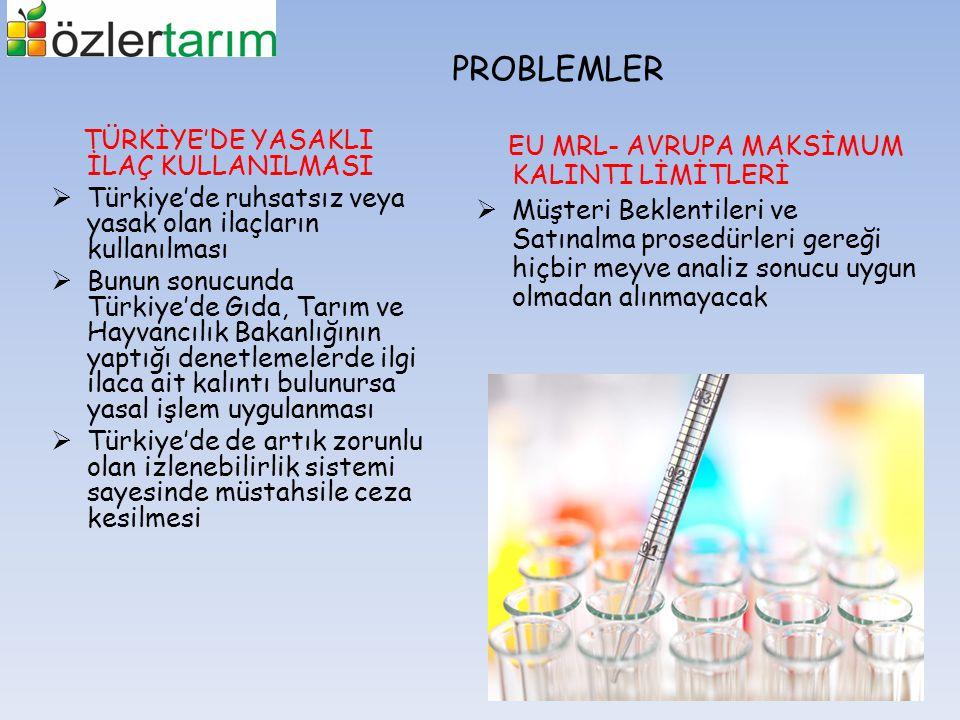 PROBLEMLER TÜRKİYE'DE YASAKLI İLAÇ KULLANILMASI  Türkiye'de ruhsatsız veya yasak olan ilaçların kullanılması  Bunun sonucunda Türkiye'de Gıda, Tarım