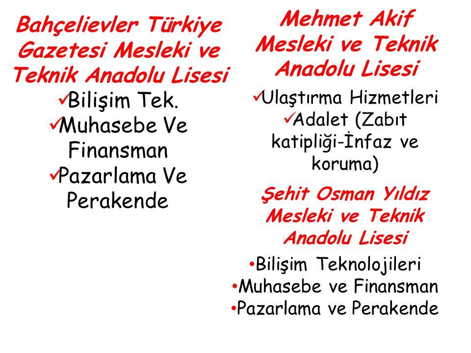 Mehmet Akif Mesleki ve Teknik Anadolu Lisesi Ulaştırma Hizmetleri Adalet (Zabıt katipliği-İnfaz ve koruma) Bahçelievler Türkiye Gazetesi Mesleki ve Te