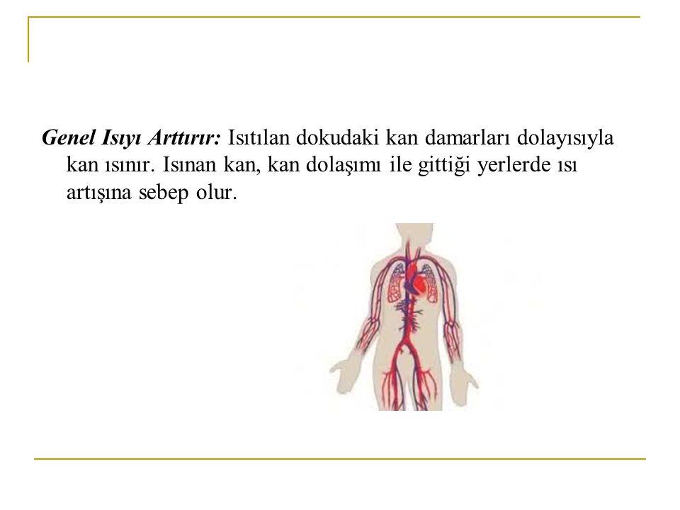 Genel Isıyı Arttırır: Isıtılan dokudaki kan damarları dolayısıyla kan ısınır. Isınan kan, kan dolaşımı ile gittiği yerlerde ısı artışına sebep olur.