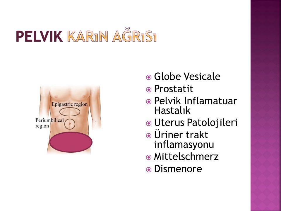  Globe Vesicale  Prostatit  Pelvik Inflamatuar Hastalık  Uterus Patolojileri  Üriner trakt inflamasyonu  Mittelschmerz  Dismenore