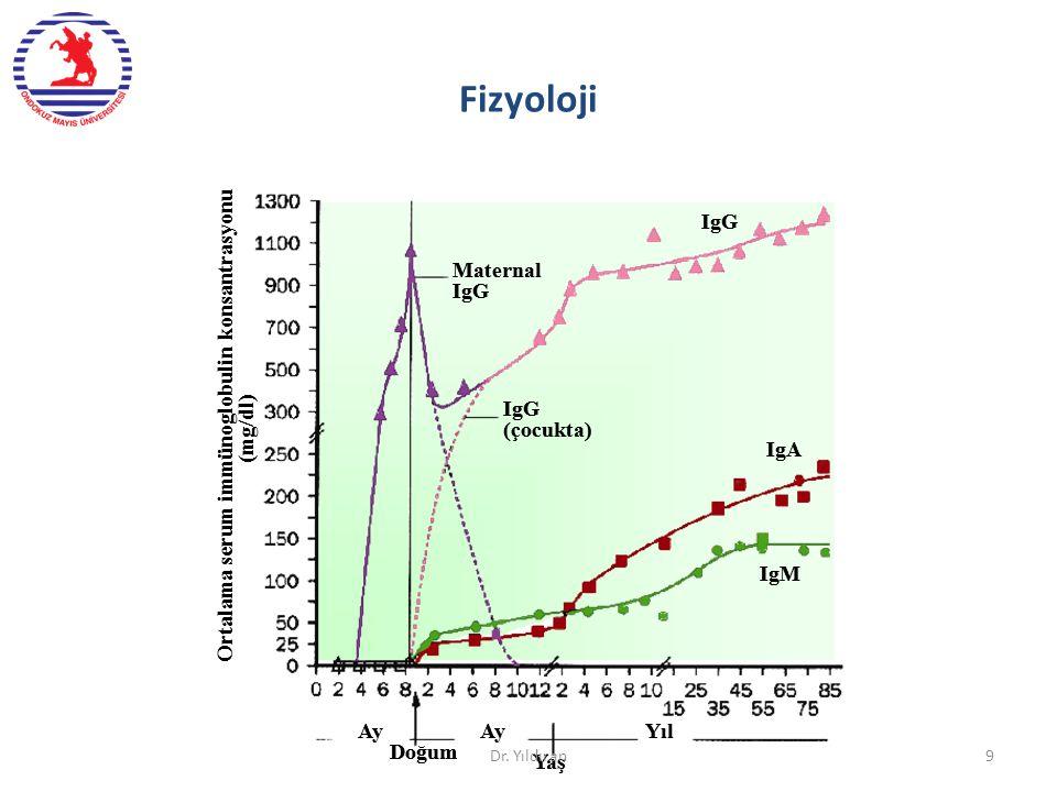 10 IL-5 Kompleman aktivasyonu Mast hücre degranülasyonu Mukozal immünite