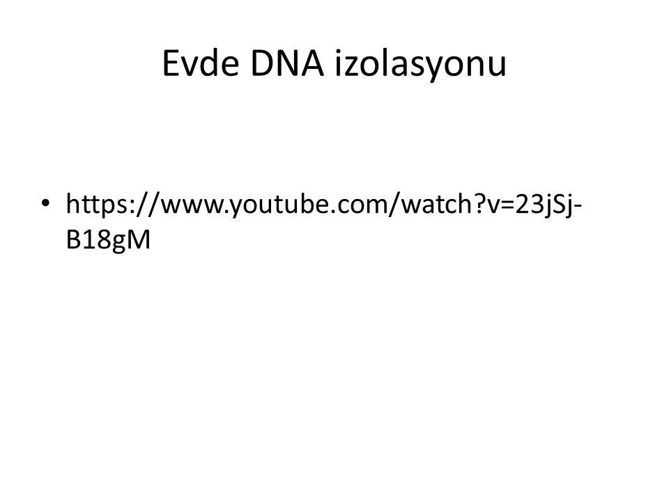 Evde DNA izolasyonu https://www.youtube.com/watch?v=23jSj- B18gM