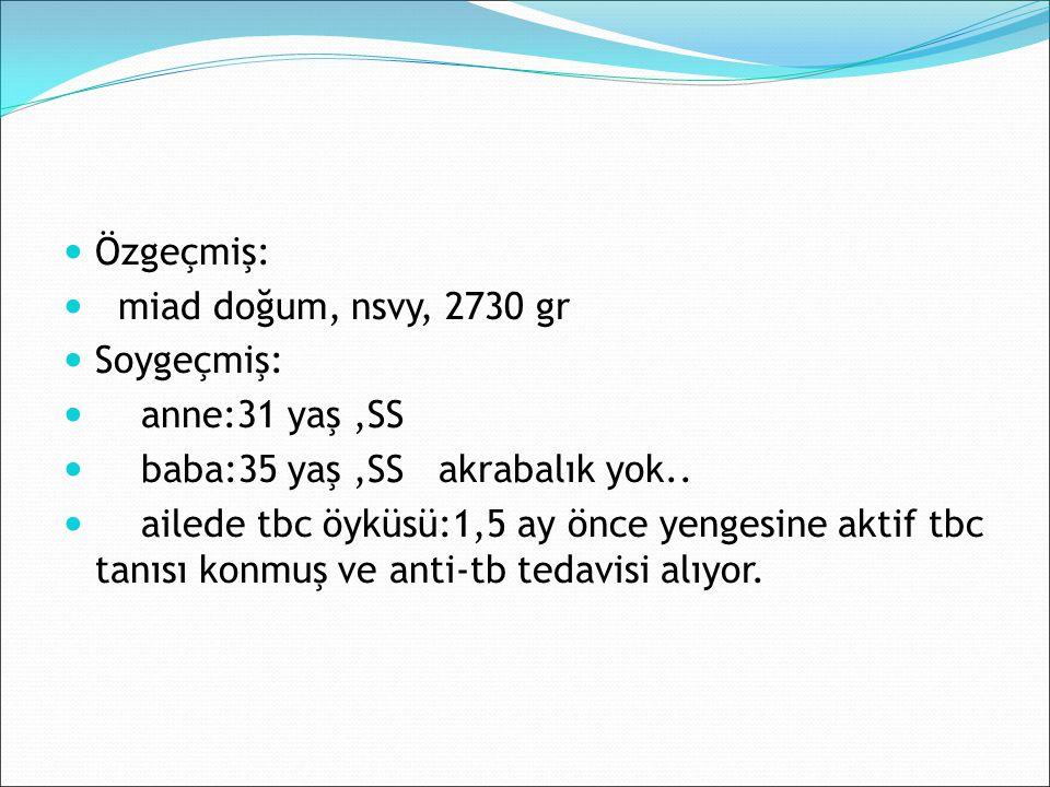 Labaratuvar: Kreatinin: 0,51 mg/dlBUN:14 AST: 323 U/L ALT: 160 U/L GGT: 44 LDH:370 Na: 135 mEq/L K: 4,5 mEq/L Ca: 10.6 mg/dl Albumin:4.3 D.Bilirubin:0,2 T.Bilirubin:0,3 Ürik Asit: 12,9 mg/dl CRP: 0.44 mg/dl Sedim: 2 mm/h WBC: 22.700 /mm³ ANS: 4400/mm³ Hgb: 13.6 g/dl PLT: 512,000/mm