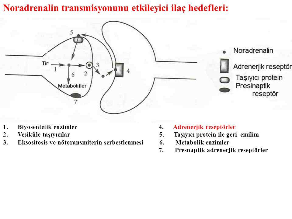 Noradrenalin transmisyonunu etkileyici ilaç hedefleri: 1.Biyosentetik enzimler 4. Adrenerjik reseptörler 2.Vesiküle taşıyıcılar 5. Taşıyıcı protein il