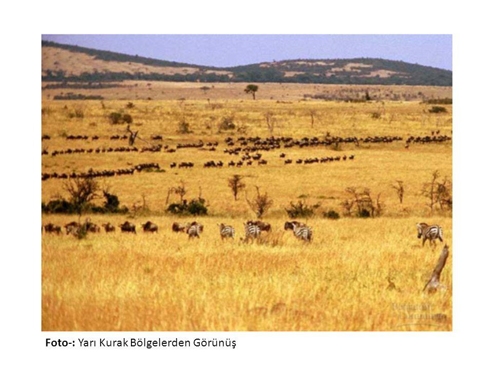 Foto-: Yarı Kurak Bölgelerden Görünüş