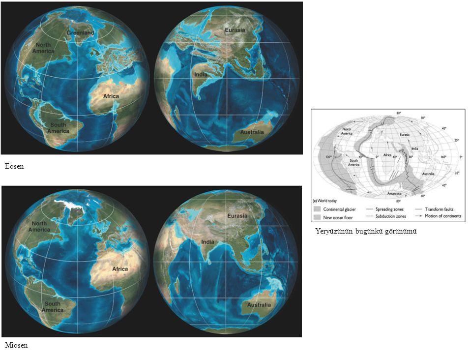 Yeryüzünün bugünkü görünümü Eosen Miosen