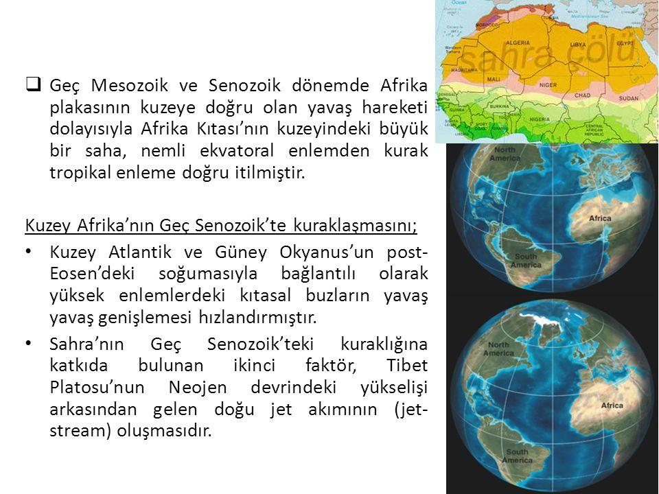  Geç Mesozoik ve Senozoik dönemde Afrika plakasının kuzeye doğru olan yavaş hareketi dolayısıyla Afrika Kıtası'nın kuzeyindeki büyük bir saha, nemli