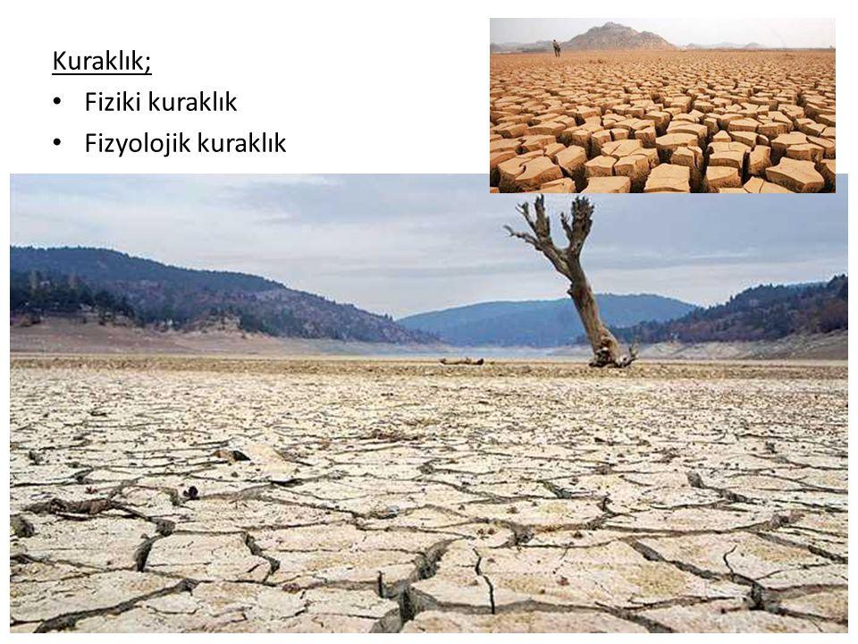 KURAK VE YARIKURAK BÖLGELERİN GÜNÜMÜZDEKİ COĞRAFİ DAĞILIŞI Yeryüzünde kurak ve yarı kurak bölgeler: Köppen formülü;  39 milyon km 2 Çöller (yani düzgün akışı olmayan sahalar): De Martonne formülü;  28 milyon km 2 kurak ve yarı kurak koşulların hüküm sürdüğü alan  İç drenaj sahaları (orografik andoreizm) da kurak bölgeler içine dahil edilirse, kurak ve yarı kurak koşulların hüküm sürdüğü alan dünya karaları üzerinde;  42 milyon km 2  Asıl kurak bölgeler (çöller),  Asıl kurak bölgeler (çöller), bütün karaları % 17'sine ulaşmış bulunmaktadır.