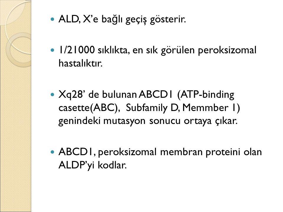ALD, X'e ba ğ lı geçiş gösterir. 1/21000 sıklıkta, en sık görülen peroksizomal hastalıktır. Xq28' de bulunan ABCD1 (ATP-binding casette(ABC), Subfamil