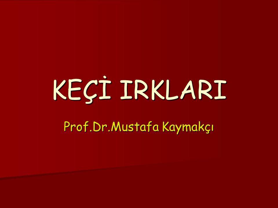 Prof.Dr.Mustafa Kaymakçı KEÇİ IRKLARI