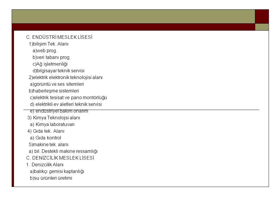 C. ENDÜSTRİ MESLEK LİSESİ 1)bilişim Tek. Alanı a)web prog. b)veri tabanı prog. c)Ağ işletmenliği d)bilgisayar teknik servisi 2)elektrik elektronik tek