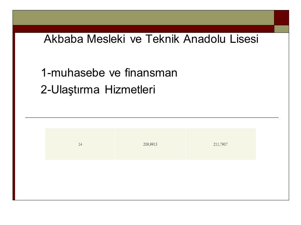 Akbaba Mesleki ve Teknik Anadolu Lisesi 1-muhasebe ve finansman 2-Ulaştırma Hizmetleri 14209,9913211,7907