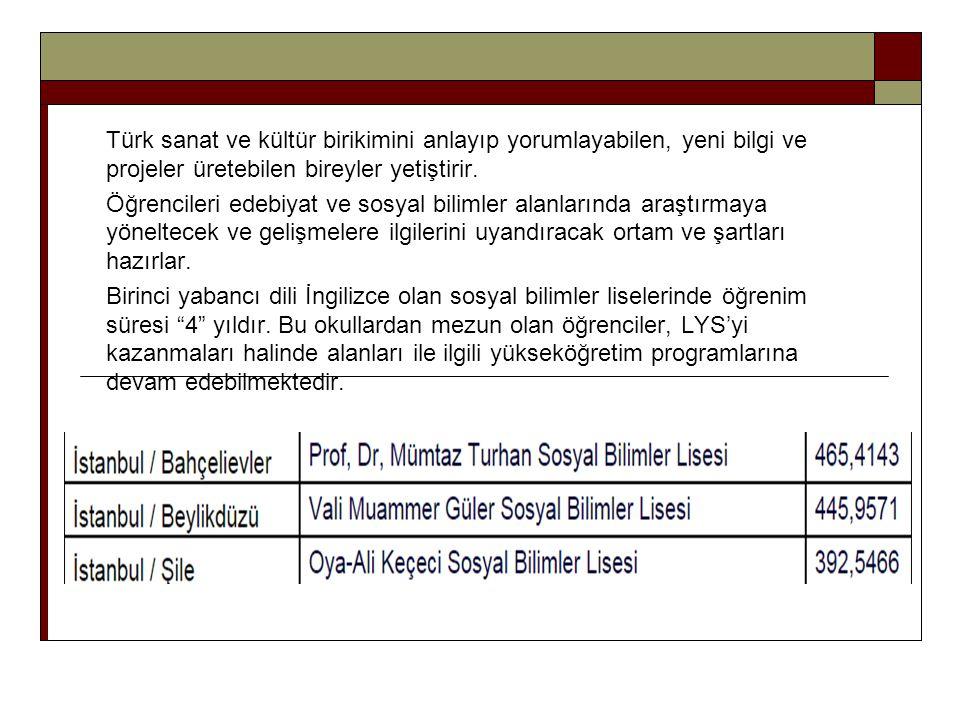 Türk sanat ve kültür birikimini anlayıp yorumlayabilen, yeni bilgi ve projeler üretebilen bireyler yetiştirir. Öğrencileri edebiyat ve sosyal bilimler