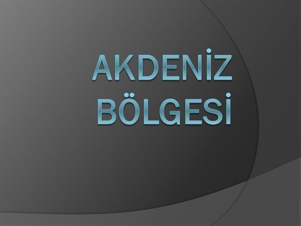 TÜRKİYE'DEKİ YERİ