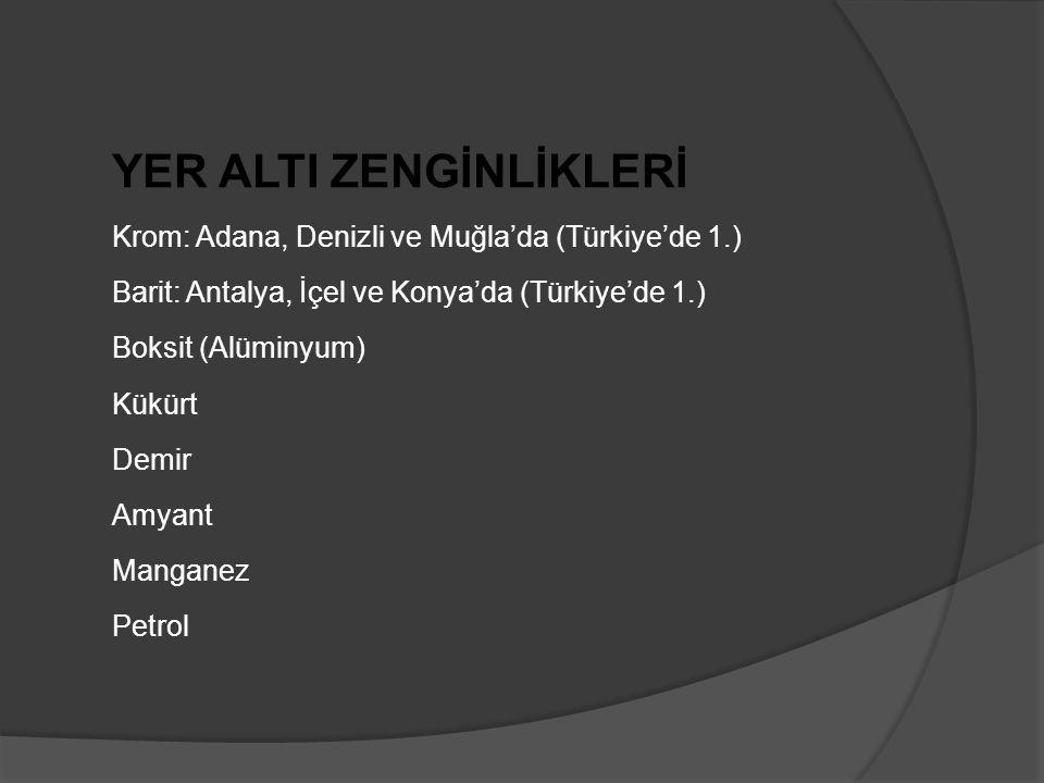 YER ALTI ZENGİNLİKLERİ Krom: Adana, Denizli ve Muğla'da (Türkiye'de 1.) Barit: Antalya, İçel ve Konya'da (Türkiye'de 1.) Boksit (Alüminyum) Kükürt Demir Amyant Manganez Petrol