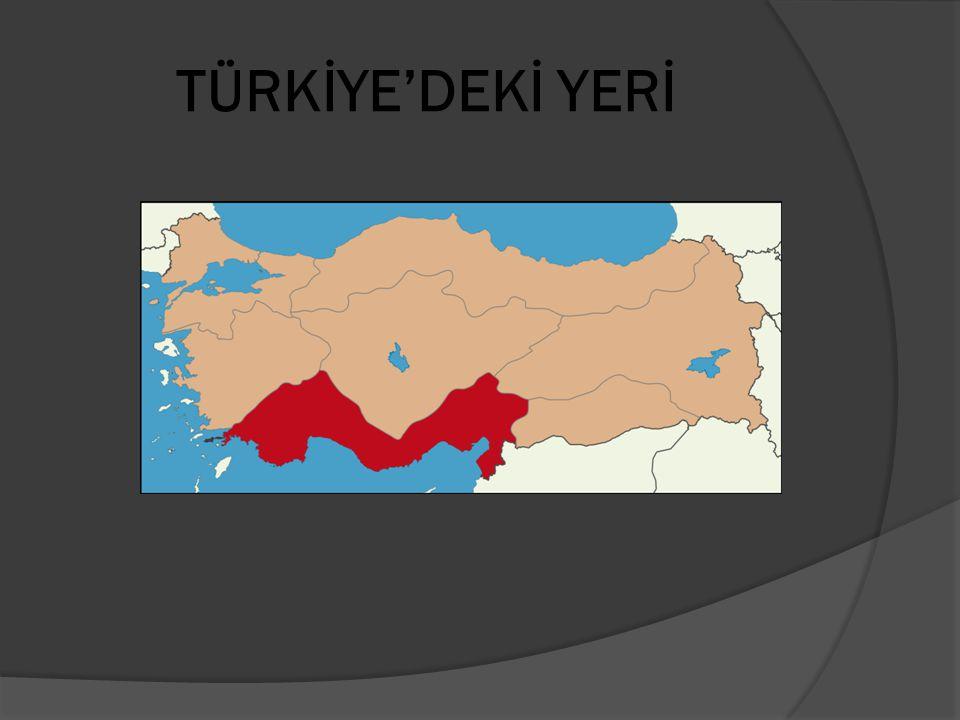 İLLER Adana, Antalya, Burdur, Hatay, Isparta, İçel, Kahramanmaraş, Kilis, Osmaniye.