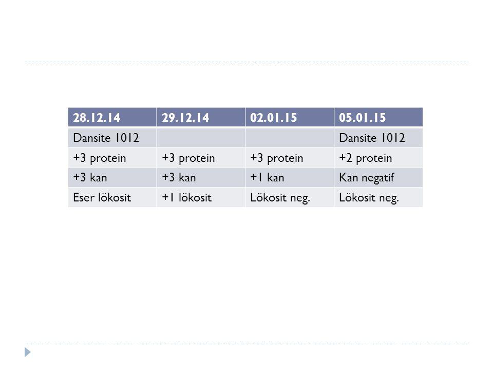 28.12.1429.12.1402.01.1505.01.15 Dansite 1012 +3 protein +2 protein +3 kan +1 kanKan negatif Eser lökosit+1 lökositLökosit neg.