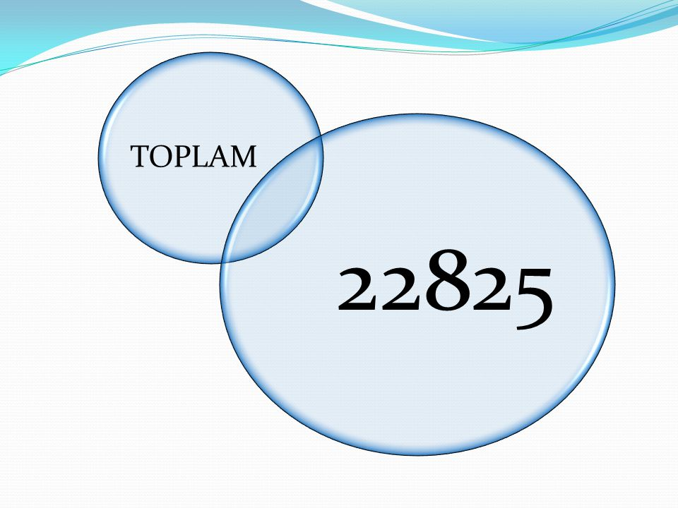 TOPLAM 22825