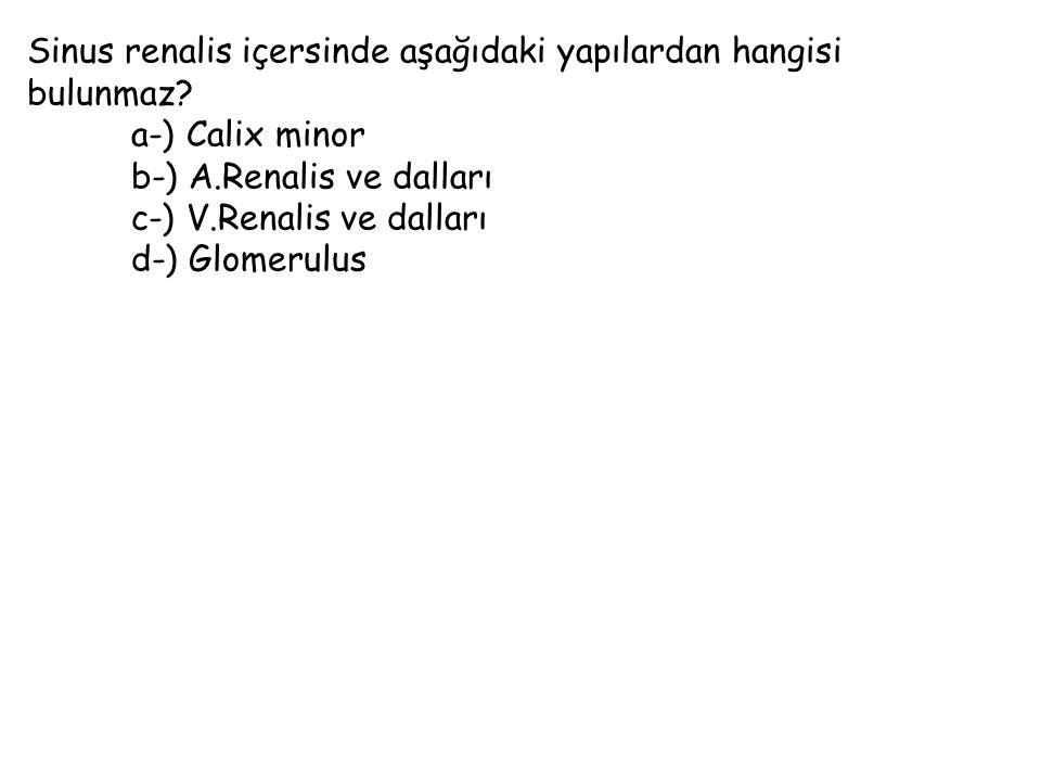 Sinus renalis içersinde aşağıdaki yapılardan hangisi bulunmaz? a-) Calix minor b-) A.Renalis ve dalları c-) V.Renalis ve dalları d-) Glomerulus
