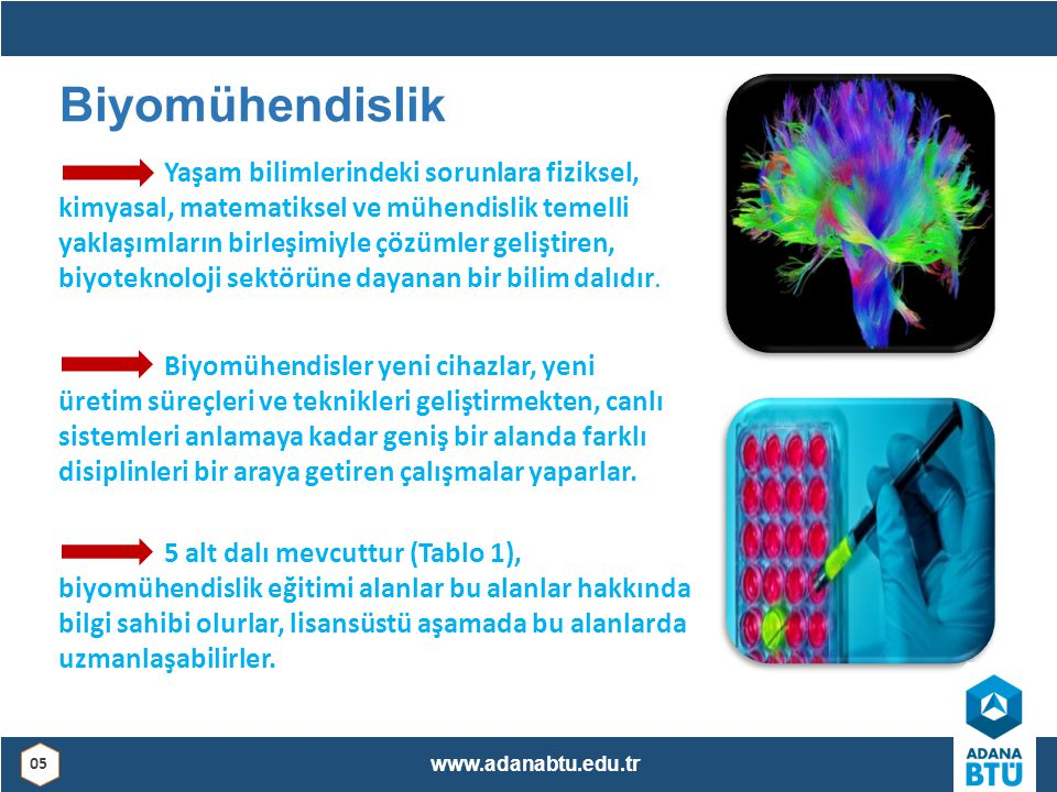 Biyomühendislik Yaşam bilimlerindeki sorunlara fiziksel, kimyasal, matematiksel ve mühendislik temelli yaklaşımların birleşimiyle çözümler geliştiren,