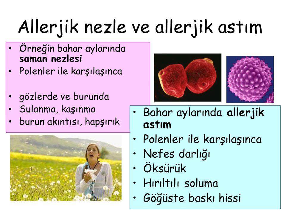 Allerjik nezle ve allerjik astım Örneğin bahar aylarında saman nezlesi Polenler ile karşılaşınca gözlerde ve burunda Sulanma, kaşınma burun akıntısı,