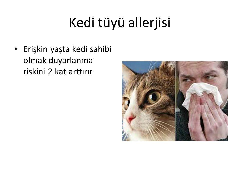 Kedi tüyü allerjisi Erişkin yaşta kedi sahibi olmak duyarlanma riskini 2 kat arttırır