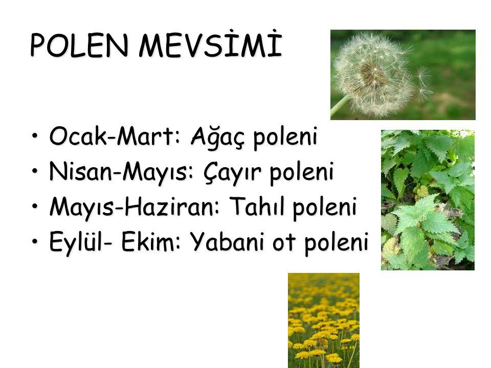 POLEN MEVSİMİ Ocak-Mart: Ağaç poleniOcak-Mart: Ağaç poleni Nisan-Mayıs: Çayır poleniNisan-Mayıs: Çayır poleni Mayıs-Haziran: Tahıl poleniMayıs-Haziran